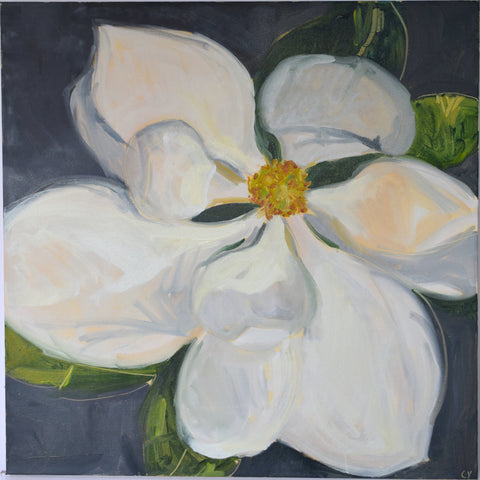 Magnolia On Grey I