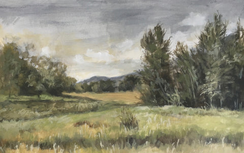 Colorado Morning- Jane Ingols