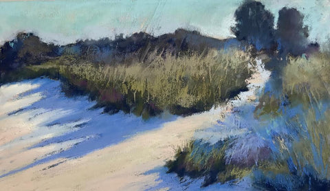 Dune Shadows- Beth Williams