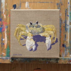 Ghost Crab I
