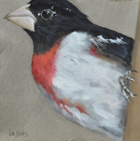 Grosbeak 2- Jane Ingols
