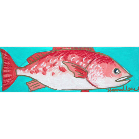 Red Snapper 4