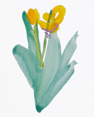 Painting 1345 Daffodil