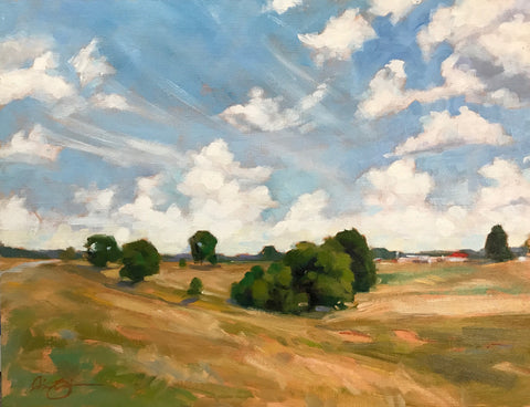 Summer Field - Lisa Gleim