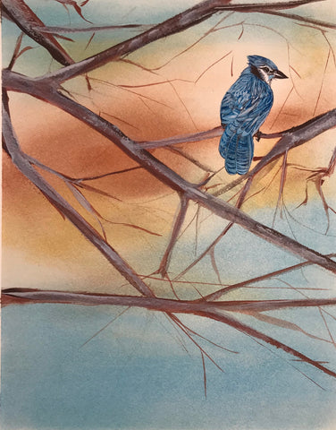 Blue Bird at Dawn