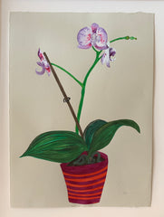 Fall Orchid with Stripes