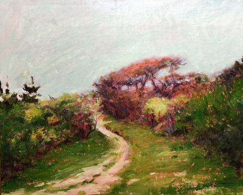 Nantucket Scrub Path