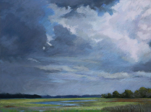 Rain Clouds and Roosts - Lisa Gleim