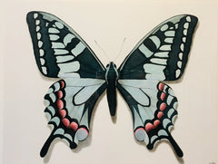 Butterfly Study 1- Richard Bowers
