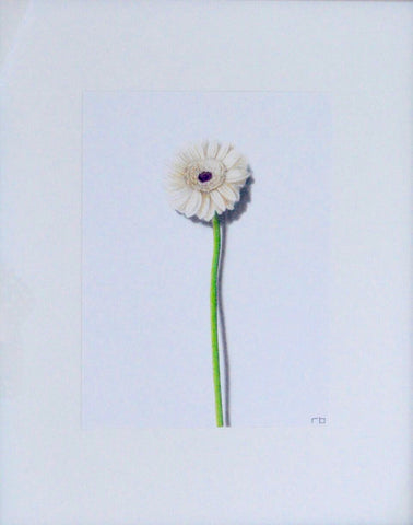 Dandelion Study - Richard Bowers