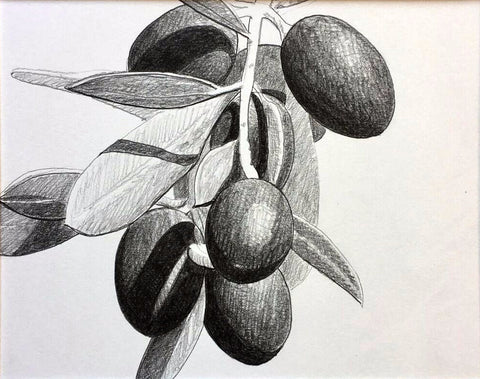 Loose Olive Study - Richard Bowers