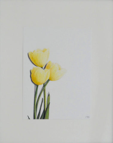 Tulip Study - Richard Bowers