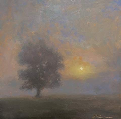 Foggy Morning Glow - Susie Callahan