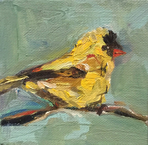 Goldfinch - Susie Elder