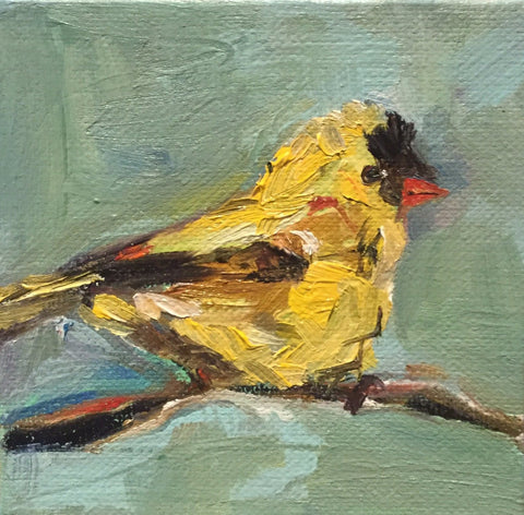 Gold Finch- Susie Elder