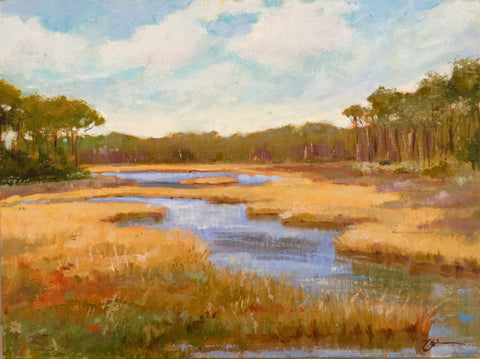 Scrub Marsh - Lisa Gleim