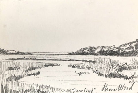 Shem Creek- Shannon Wood