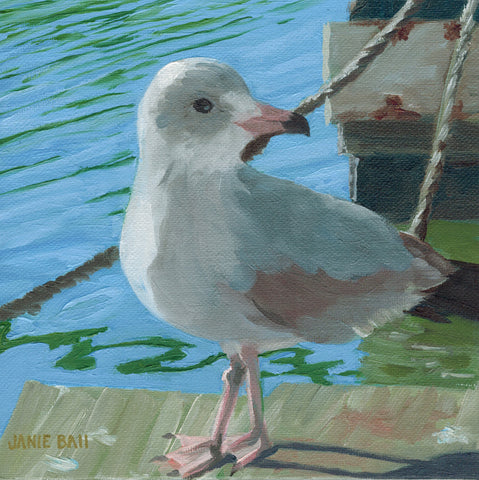 Shem Creek Seagull Attitude - Janie Ball