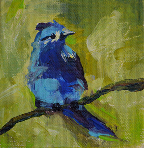 Blue Bird in Green
