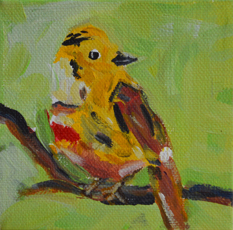 Yellowhammer - Susie Elder
