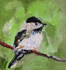 Chickadee in Green