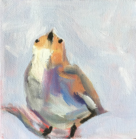 Little Bird - Susie Elder