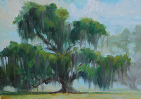 Oak Tree and Spanish Moss- Lisa Gleim