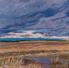 Storm Over the Marsh - Susie Callahan