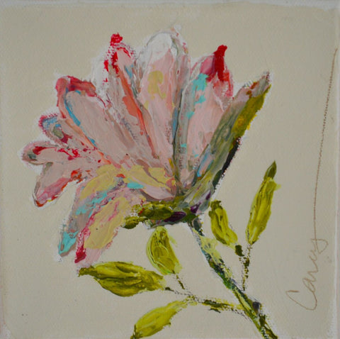 Beautiful Flower 1 - Carey Haynes
