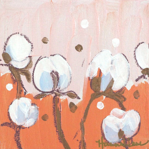 Peach Cotton Blossoms - Hannah Lane