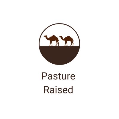 Our happy camels are pasture raised on our farm.