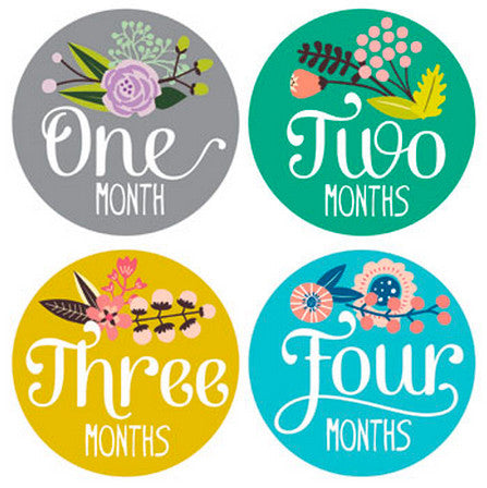 FLORAL MONTHLY BABY STICKERS