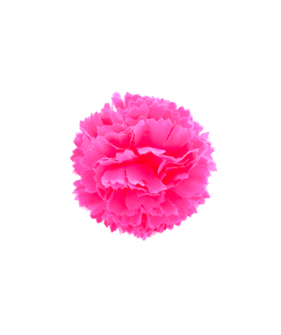 MINI POM POM FLOWER (multiple colors)