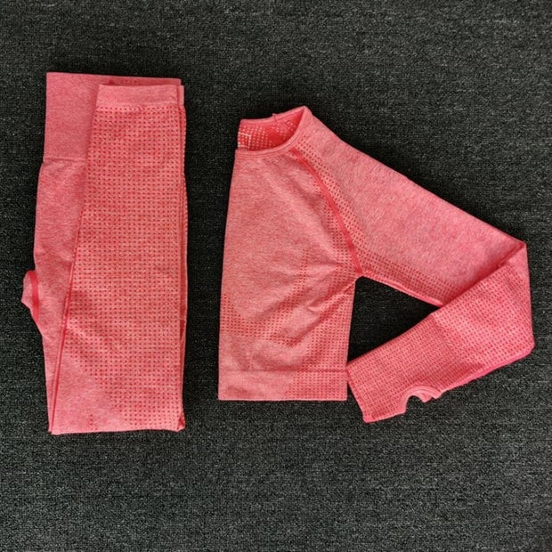 Seamless Fitness Yoga Pants Set