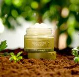 < NEW ARRIVAL > I'M FROM Mugwort Cream - 50g