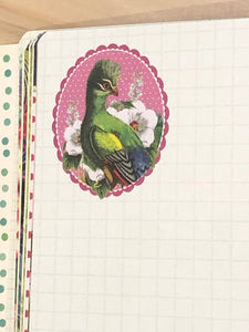 Illustrated notebook-Bird / イラスト入りノート- 鳥