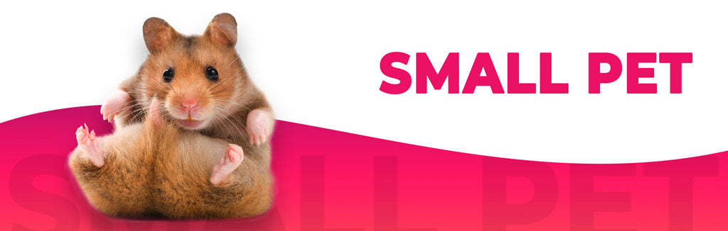 Small Pet Food & Supplies