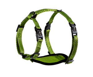 Alcott Adventure Harness Green
