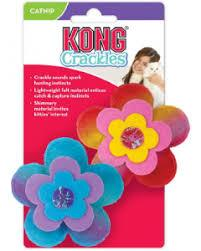 KONG Crackles Bloomz