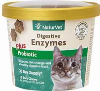 NaturVet Digestive Enzymes Plus Probiotics Cat Soft Chews, 60 count