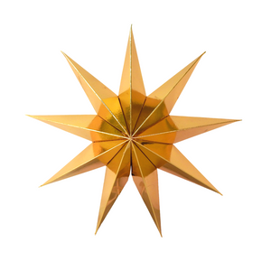 Black and Gold hanging star decoration