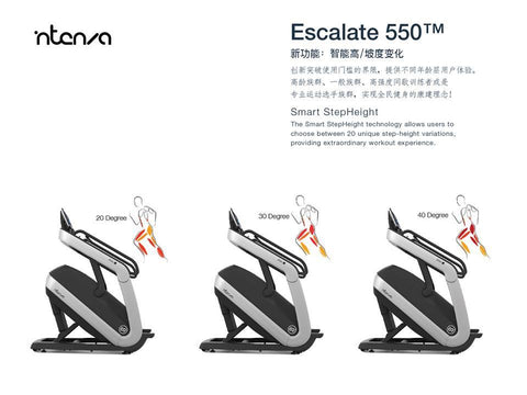 Intenza Fitness 550CE2 Full Commercial Escalate Stair climber