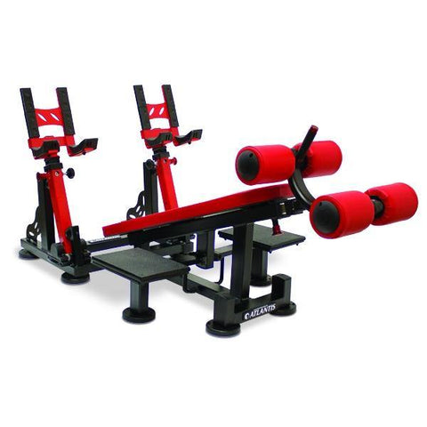 P-539 Decline Dumbbell Bench with pivots