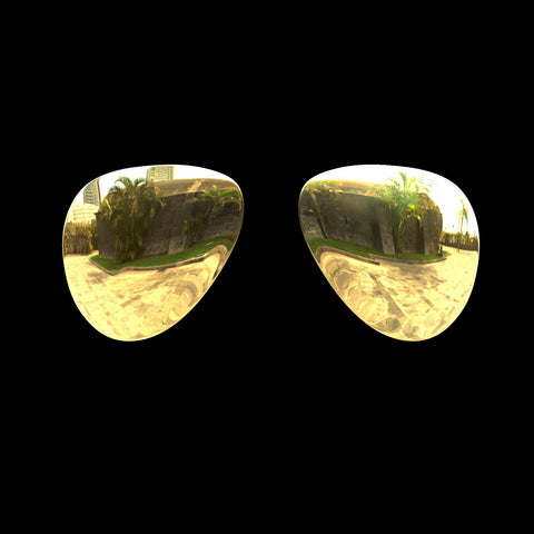 VEKTOR - Polarized Lenses - Gold Mirror