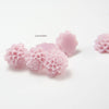 Acrylic Cabochons - Flower 14mm (5F)