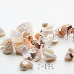 Assorted Shell Beads and Charms