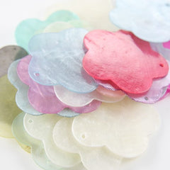 Assorted Flower Shaped Shell - 40mm