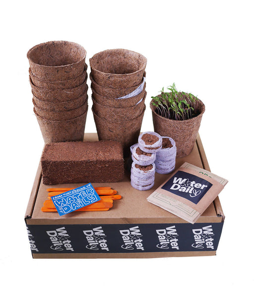 Seed Starter Kit - I'll Bring You Flowers - Biodegradable & Plastic Free | Water Daily - Just Think Eco