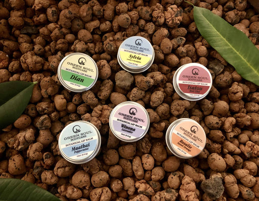 ~ The Protectors ~ Lip balms | Handmade Organic Lip Balms - Just Think Eco