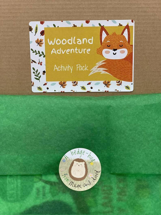 Woodland Animals Children Activity Pack, Forest Kids Arts Crafts, Eco Friendly Plastic Free, Nature Fall Christmas/ Birthday Party Gift/ Toy